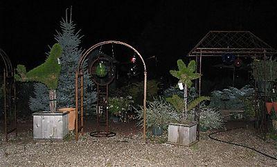 Night Garden IMG_1908